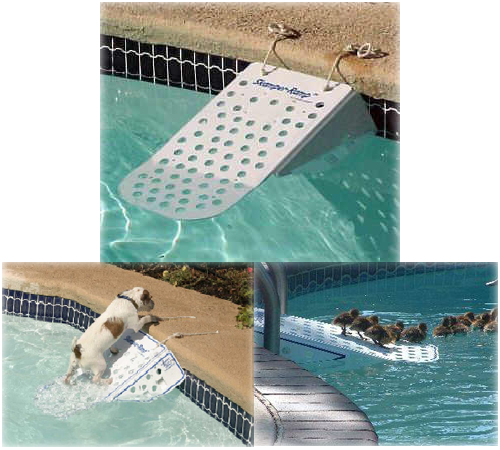 la rampa para piscina de tu mascota piscinas code